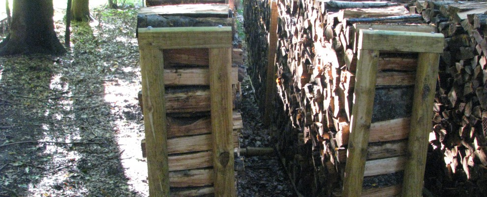 Firewood Chords